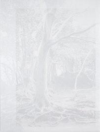 "Cameron Martin. ""Bastine Study,"" 2010. Acrylic on canvas over panel. 48 x 36""."