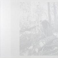 "Cameron Martin. ""Stratal,"" 2010. Acrylic on canvas. 60 x 60""."