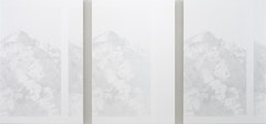 "Cameron Martin. ""Tisdor Sequence,"" 2010. Acrylic on canvas over panel. 54 x 115.5"" overall dims; 54 x 36"" each panel."