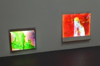 """Dave Miko and Tom Thayer, """"New World Pig,"""" installation view. Photograph courtesy of David Allison."""
