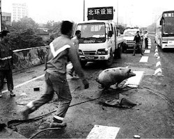 Disorder. 2009. China. Directed by Huang Weikai. Image courtesy of the filmmaker.