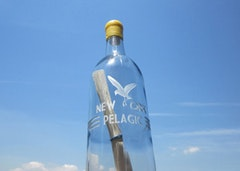 "George Boorujy, ""New York Pelagic,"" (2011) Glass bottle, one original drawing, one explanation/questionair."
