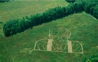 <i>Learn How to Fly Over a Very Large Larry (Crop Sign)</i>, 2002. Impression on grass. 250 x 300 feet. Image courtesy of the artist and Andrew Kreps Gallery