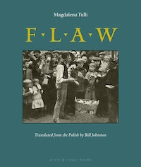 Magdalena Tulli, <i>Flaw</i> (2007). Courtesy of Archipelago Books.