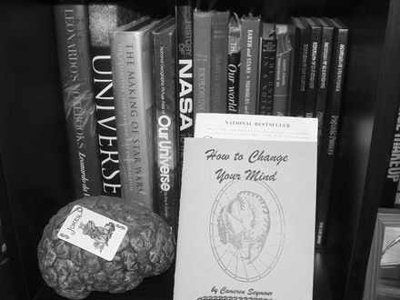 The research shelf: <i>This Clement World</i>. Photo by Michelle Memran.