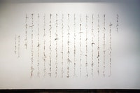 Cui Fei, Manuscript of Nature V_XXXII, 2012. Installation view at Chambers Fine Art.