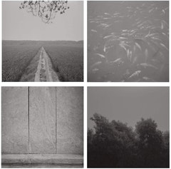 Taca Sui (b. 1984), Odes of Chen Series 3, 2010. Platinum print. Set of 4, 7 7/8 x 7 7/8