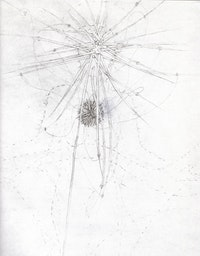 "Maria Bussman, large detail of ""thoughts governed head"" from About the Visible and Invisble of Merleau-Ponty (2002-2004). Pencil on paper, 13.8"