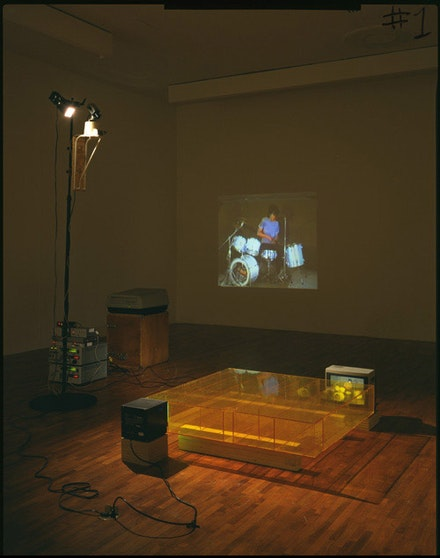 Bruce Nauman, <em>Learned Helplessness in Rats (Rock and Roll Drummer).</em> 1988.  Plexiglass maze, closed-circuit video camera, scanner and mount, switcher, two videotape players, 13-inch color monitor, 9-inch back-and-white monitor, video projector, and two videotapes (color, sound), Dimensions variable. Acquisition from the Werner Dannheisser Testamentary Trust.  471.1996. © 2012 Bruce Nauman/Artists Rights Society (ARS), New York. Courtesy the Museum of Modern Art, New York.