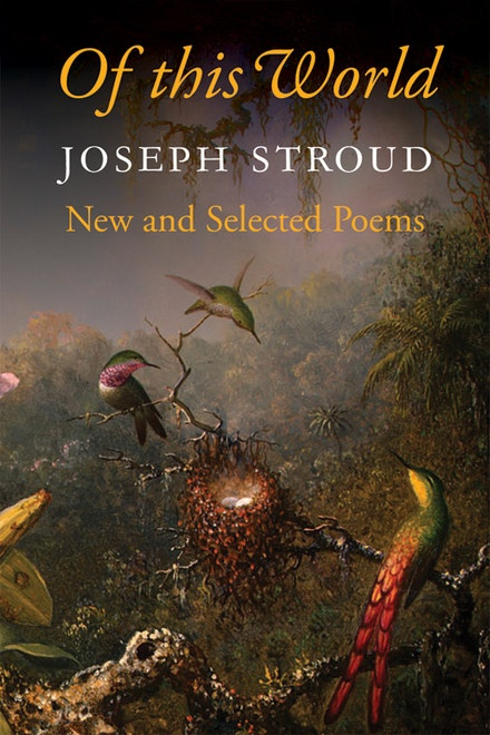 <i>Martin Johnson Heade</i>, Cattelya Orchid and Three Brazilian Hummingbirds <i>Book Design: Valerie Brewster</i>